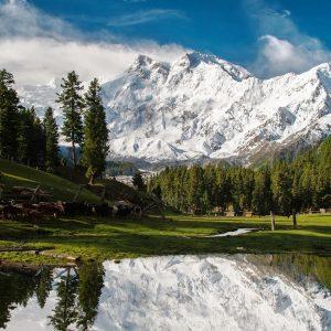 Pakistan-Nanga_Parbat-lake-reflection