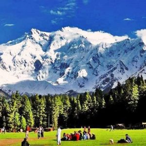 fairy-Meadows-summer-nanga-parbat-870×555