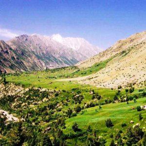 rupal valley greenry