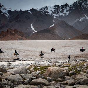 shimshali yak riders