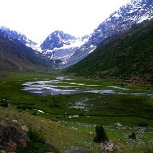yasin valley meadows
