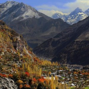 hunza-valley-blossom